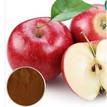 Јабучни полифеноли