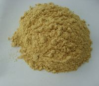 Ginger (Gingembre) Extract