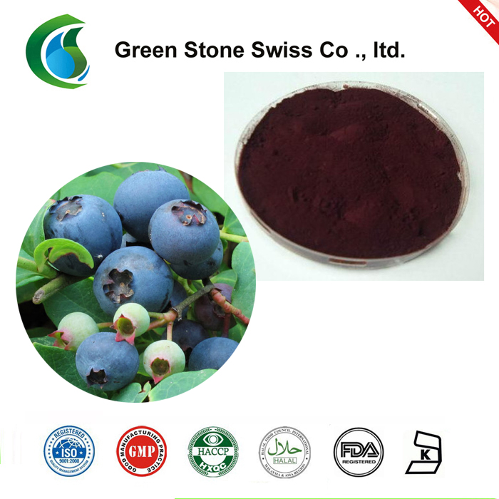 Chinese Bilberry Extract