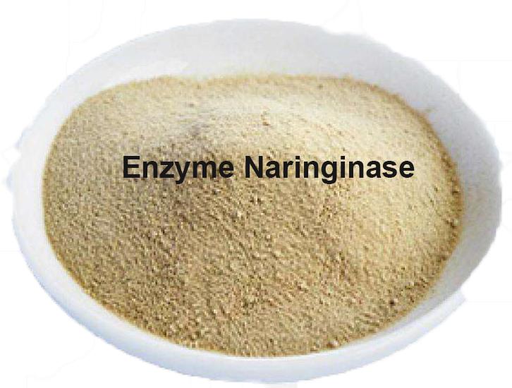 酵素ナリンギナーゼ