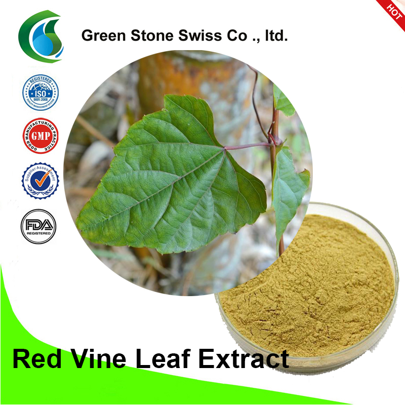 Red Vine Leaf Extract (Vitis Vinifera)