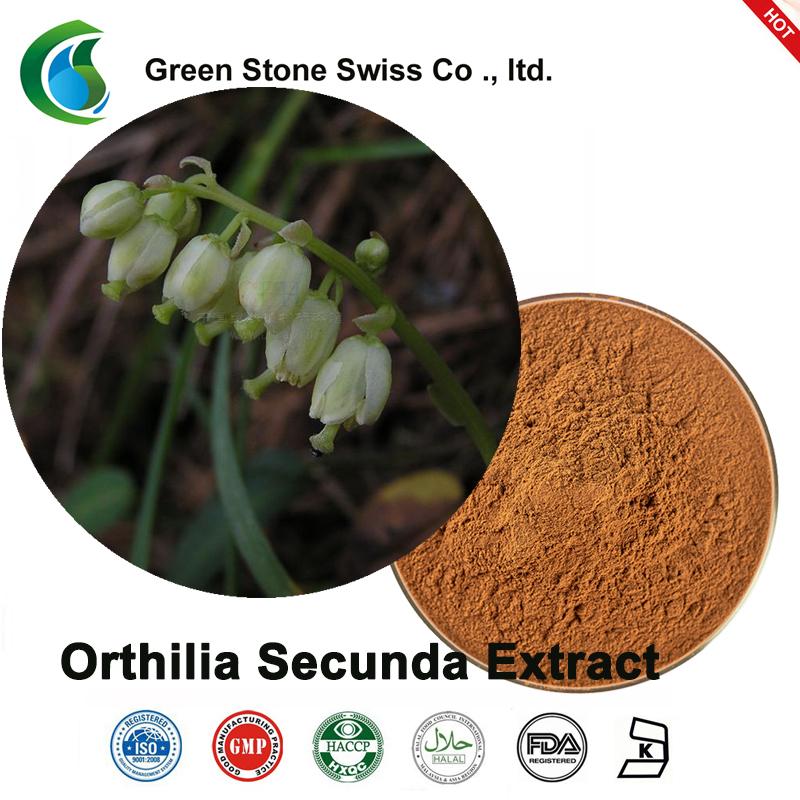 Extrakt z Orthilia Secunda