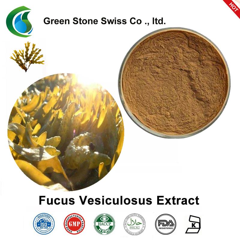 Fucus Vesiculosus Extract(フカスエキス)