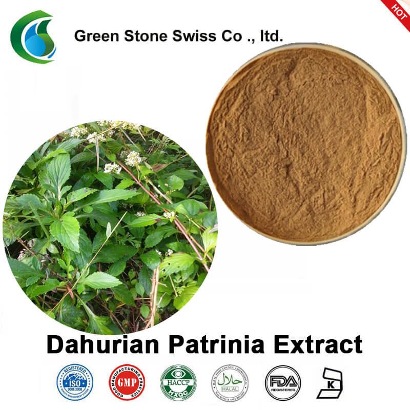 Ekstrakt z Dahurian Patrinia (Wyciąg z Whiteflower Patrinia)