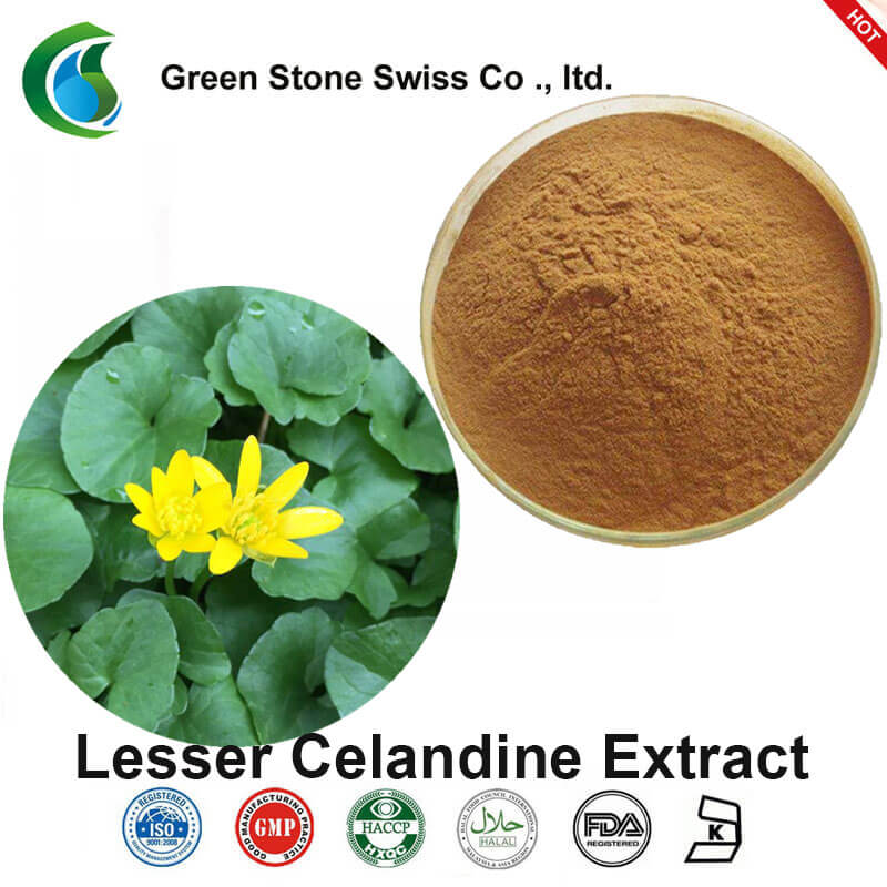 Помал екстракт од Celandine (екстракт од Ranunculus ficaria)