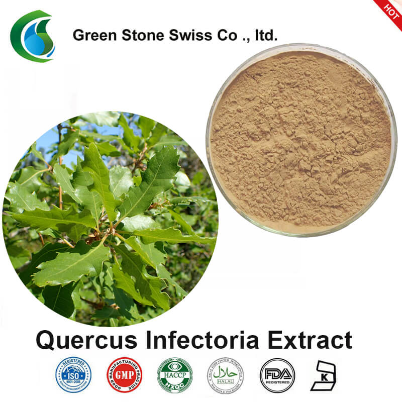 תמצית Quercus Infectoria