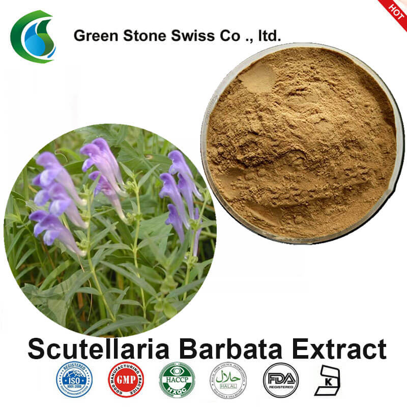 ScutellariaBarbata抽出物