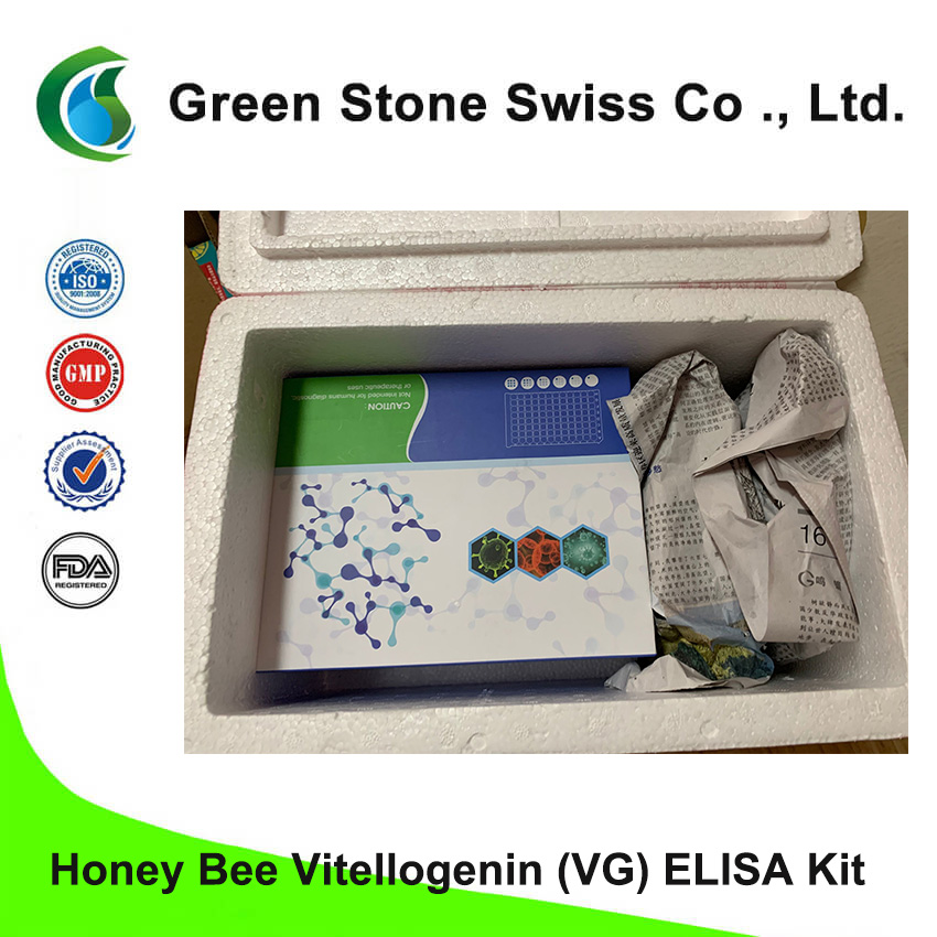 ชุด ELISA ของ Honey Bee Vitellogenin (VTG)