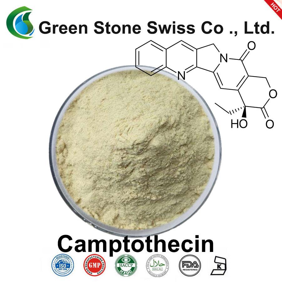 ยา camptothecin