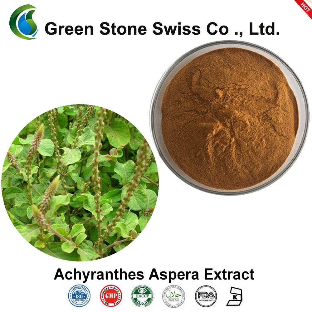 Achyranthes Aspera ekstraktas