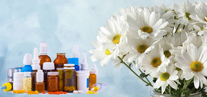 Pharmaceutical benefits of Chamomile Extract